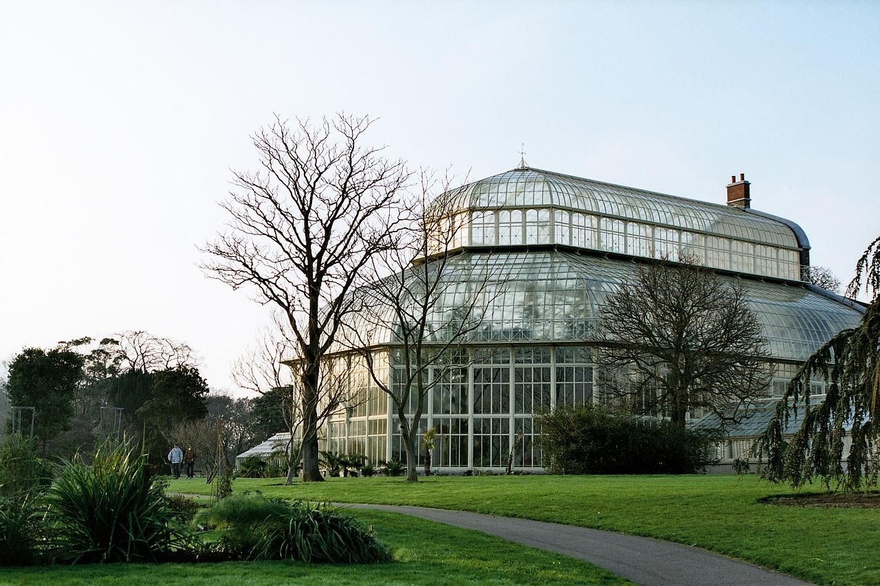 Oranżerie Greenhouse