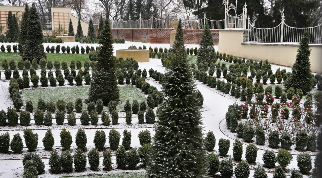 jak zabezpieczyć rośliny przed zimą