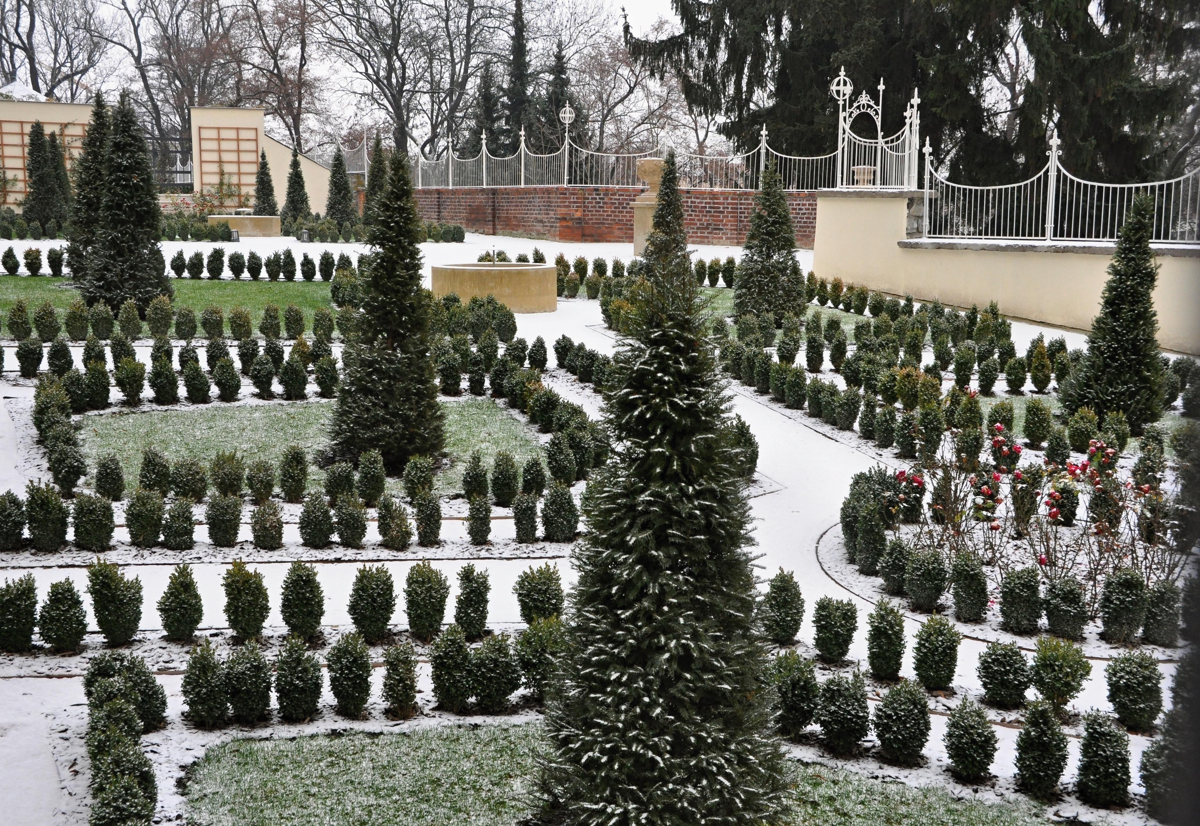 8 sposobów na zabezpieczenie roślin przed zimą