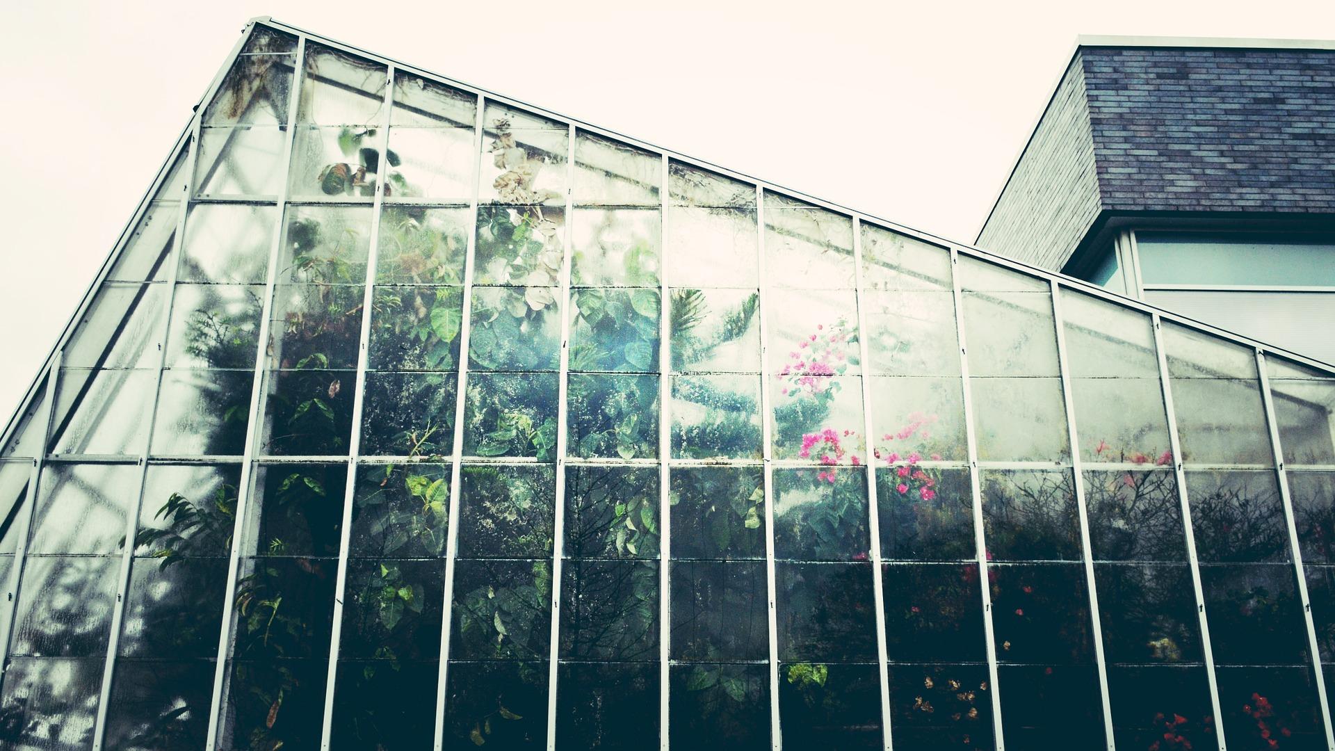 O czym pamiętać mając szklarnie ogrodowe